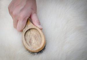 lammfell reinigen tipps zum pflegen und reinigen von schaffell. Black Bedroom Furniture Sets. Home Design Ideas