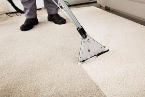 professionelle Fachkraft säubert Teppich mit speziellem Gerät