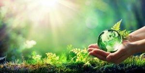 Hände halten grünen Kugel in der Natur